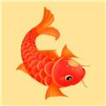 红鱼赚app下载_红鱼赚app最新版免费下载