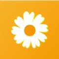 雏菊资讯app下载_雏菊资讯app最新版免费下载
