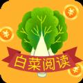 白菜阅读app下载_白菜阅读app最新版免费下载