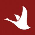 今日爆团app下载_今日爆团app最新版免费下载