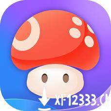 蘑菇云游戏最新版