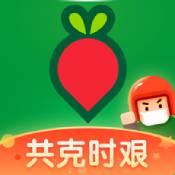 叮咚买菜app下载_叮咚买菜app最新版免费下载