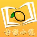柠檬小说最新版app下载_柠檬小说最新版app最新版免费下载