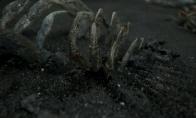 死亡搁浅隐生虫的用处是什