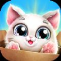口袋小猫游戏手游下载_口袋小猫游戏手游最新版免费下载
