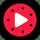 西瓜视频app下载_西瓜视频app最新版免费下载