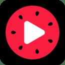 西瓜视频最新版v1.0.3app下载_西瓜视频最新版v1.0.3app最新版免费下载