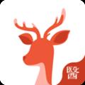 小鹿医生版v2.5.3app下载_小鹿医生版v2.5.3app最新版免费下载