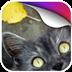卖萌猫大人动态壁纸v1.0app下载_卖萌猫大人动态壁纸v1.0app最新版免费下载