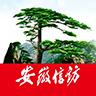 安徽手机信访客户端app下载_安徽手机信访客户端app最新版免费下载