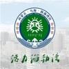 云上海勃湾最新版app下载_云上海勃湾最新版app最新版免费下载