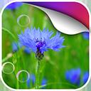 garden动态壁纸v1.0Android版app下载_garden动态壁纸v1.0Android版app最新版免费下载