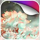 荧光虫动态壁纸v1.0Android版app下载_荧光虫动态壁纸v1.0Android版app最新版免费下载