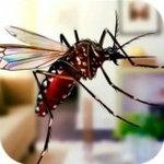 超级蚊子乱斗