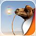 阳光沙漠动态壁纸v1.0app下载_阳光沙漠动态壁纸v1.0app最新版免费下载