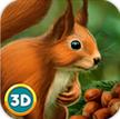 松鼠模拟器手游下载_松鼠模拟器手游最新版免费下载