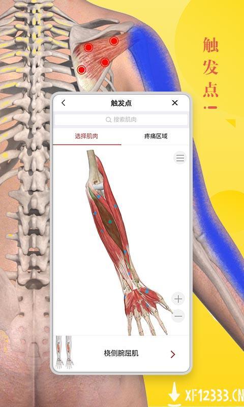 3dbody解剖软件下载_3dbody解剖软件手游最新版免费下载安装