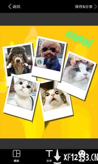 照片拼图软件下载_照片拼图软件手游最新版免费下载安装