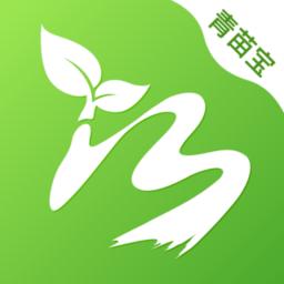 青苗宝app下载_青苗宝app手游最新版免费下载安装