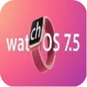 watchOS7.5开发者预览版beta2