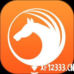 天马浏览器最新版app下载_天马浏览器最新版app最新版免费下载