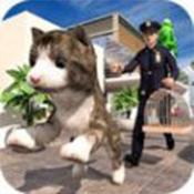 非常宠物猫模拟器手游下载_非常宠物猫模拟器手游最新版免费下载